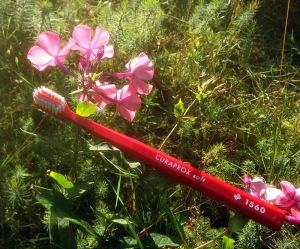 Zahnbürste von Curaprox